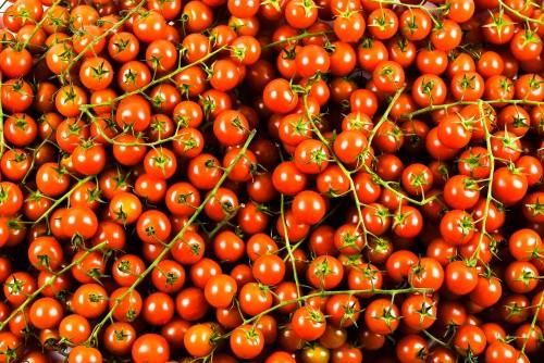 Vyšniniai pomidorai